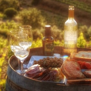 wines and snacks at celler devinssi wine tours in priorat