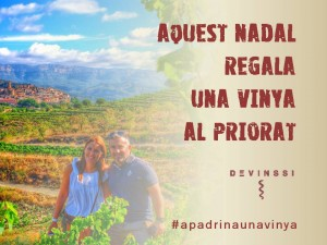 idea original regal nadal apardina una vinya priorat devinssi