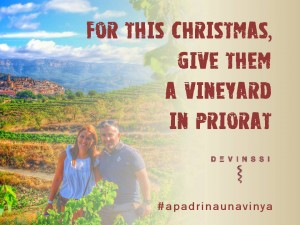 original gift idea christmas adopt a grapevine priorat devinssi